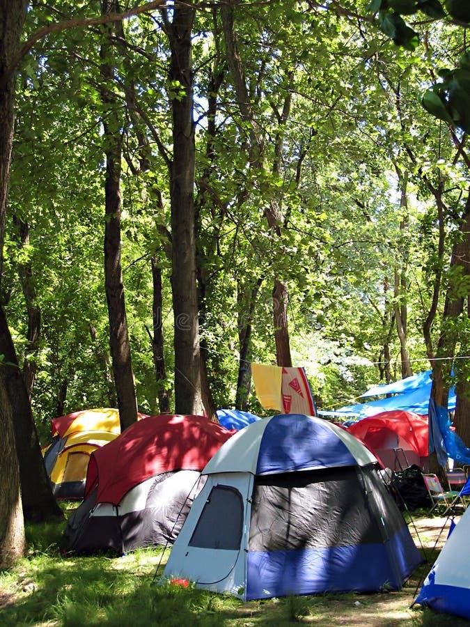 Het kamperen in het Bos royalty-vrije stock afbeelding