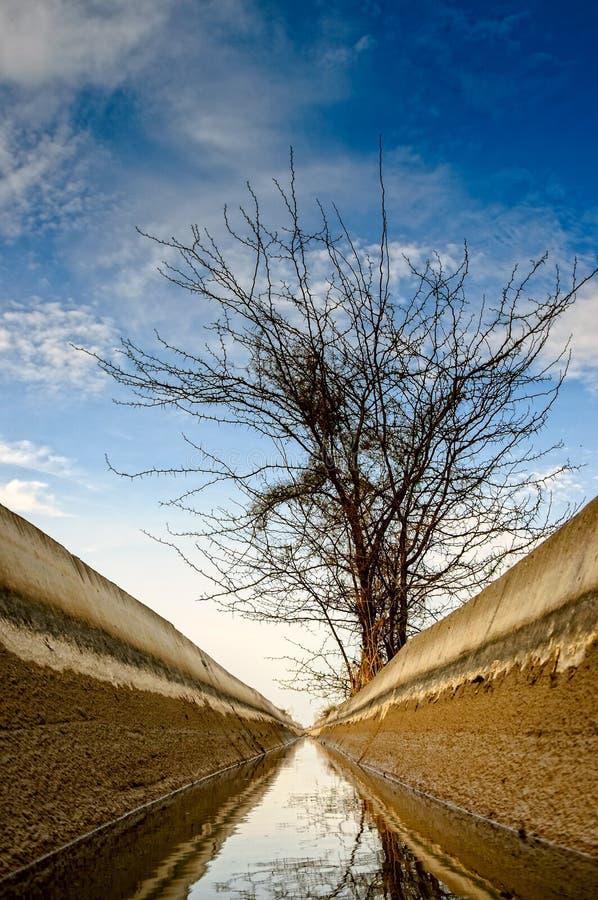 Het kanaal van de Irrigatie. royalty-vrije stock foto