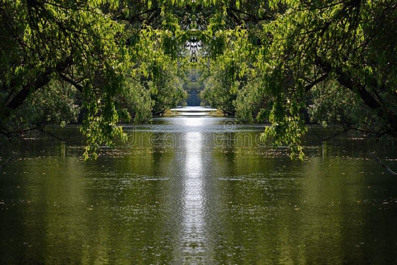 Download Het Kanaalscène Van Het Peacefullwater Stock Foto - Afbeelding bestaande uit bulgarije, life: 54084126