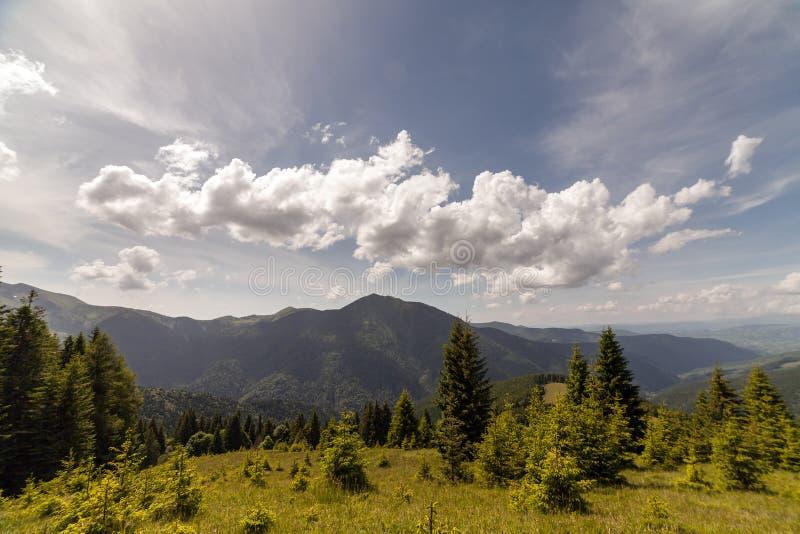 Het Karpatische landschap van de bergenzomer met blauwe hemel en wolken royalty-vrije stock foto