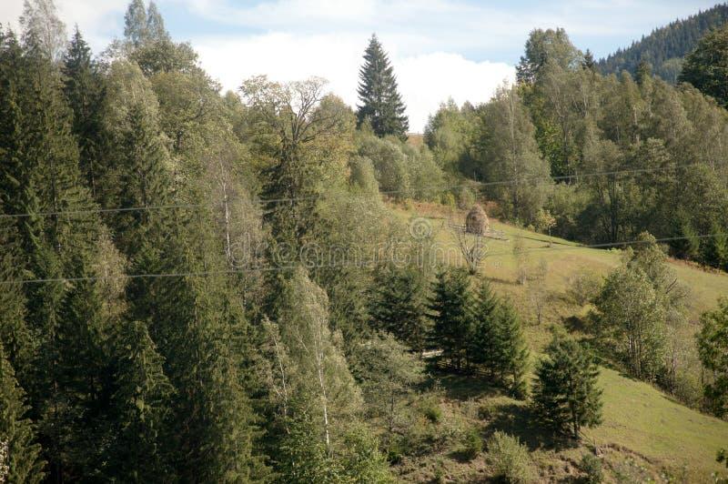 Het Karpatische landschap van de bergenzomer met groene heuvels en houten omheining, royalty-vrije stock foto's
