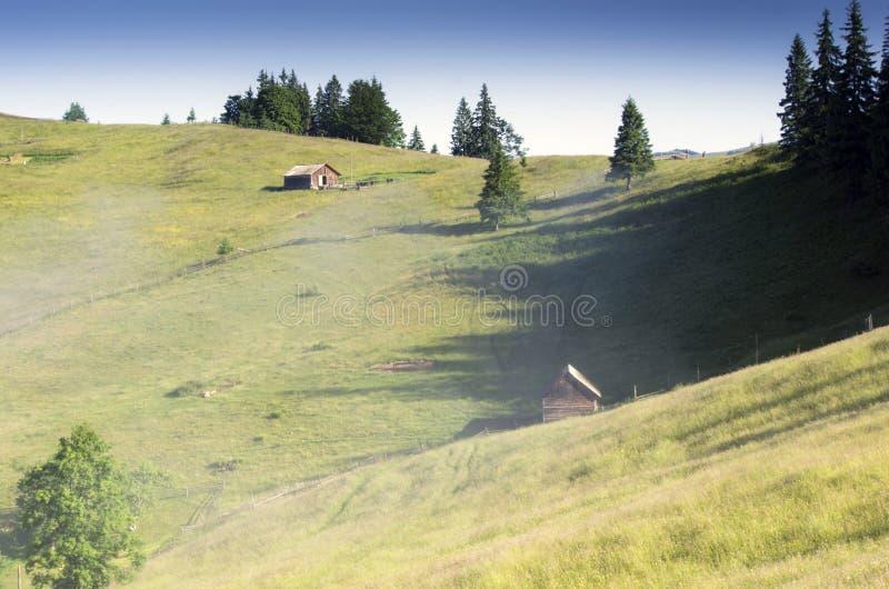 Het Karpatische landschap van het bergplateau (, de Oekraïne) royalty-vrije stock fotografie