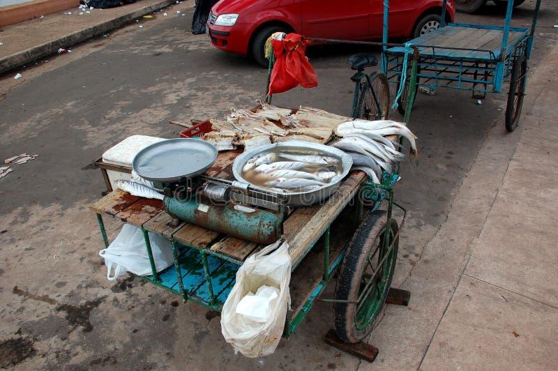 Het Karretje van vissen stock afbeelding