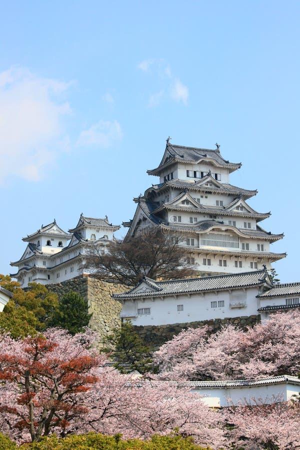 Het kasteel en de lentekersenbloesems van Himeji stock afbeelding