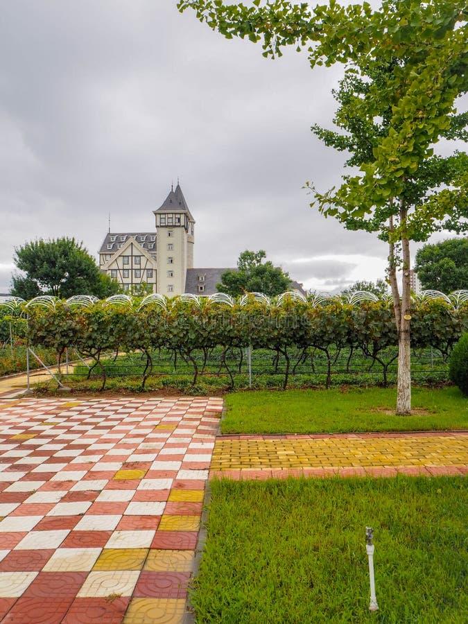 Het kasteel en de wijngaarden van goed - bekend Chinees wijnmerk Changyu, de grootste producent in China stock fotografie