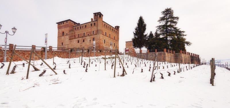 Het Kasteel en de wijngaarden van Grinzanecavour Het beeld van de kleur royalty-vrije stock foto