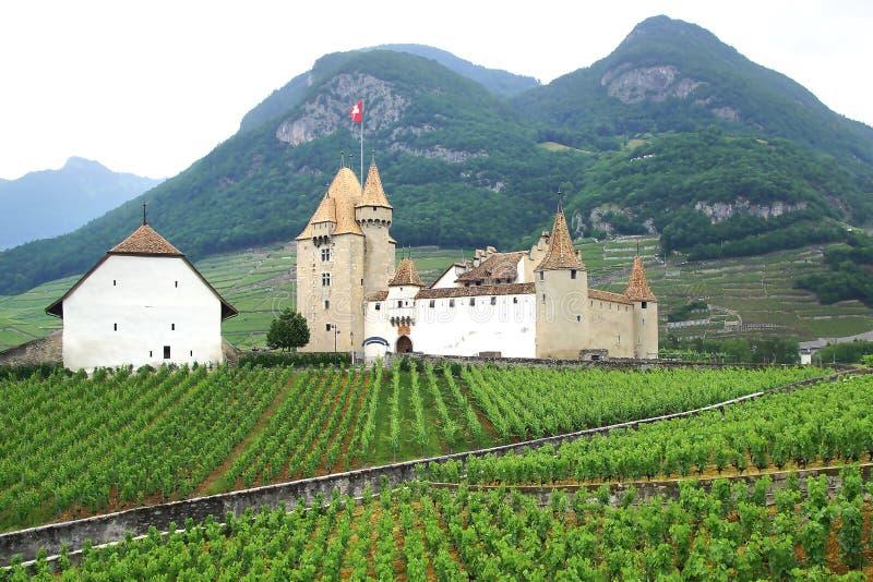 Het kasteel van Aigle Vandaag is het kasteel naar huis aan Wijnstok en wijnmuseum Het is een Zwitserse erfenisplaats van national royalty-vrije stock fotografie