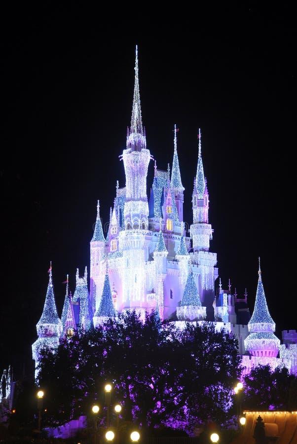 Het Kasteel van Disney Cinderella bij nacht royalty-vrije stock fotografie