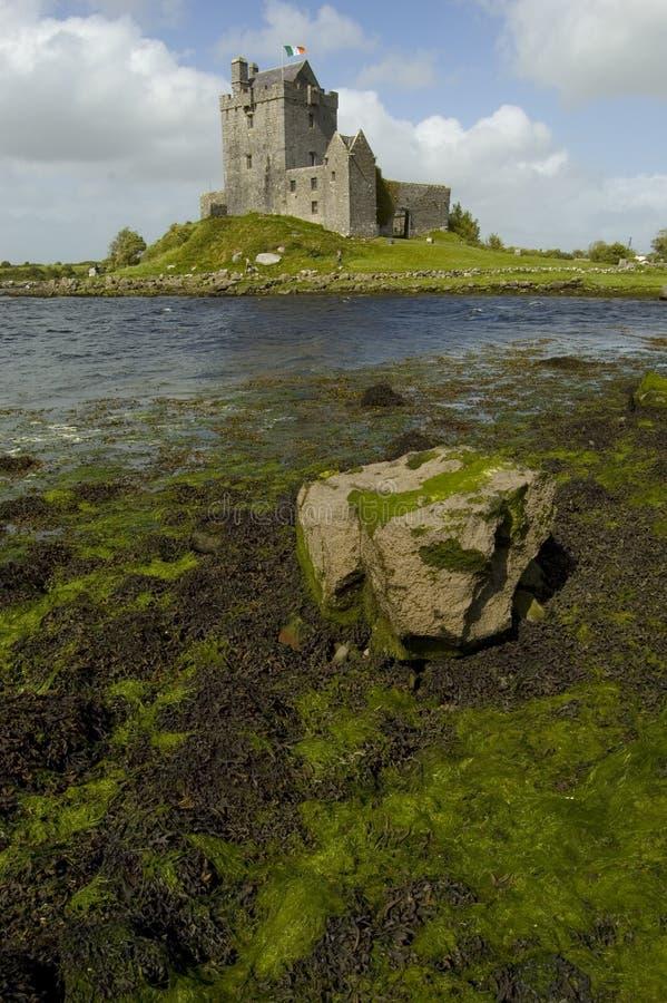 Het kasteel van Dunguaire. Ierland royalty-vrije stock foto