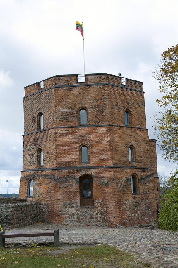 Het kasteel van Gediminas, Vilnius, Litouwen stock foto's