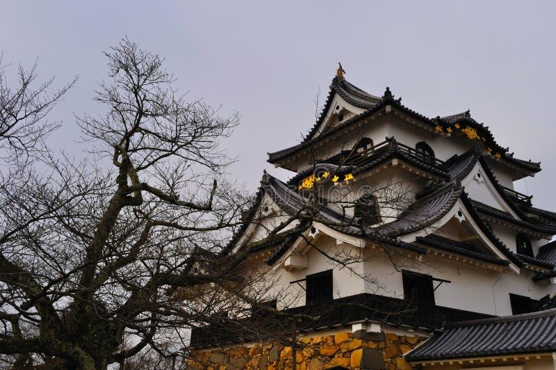 Het Kasteel van Hikone houdt (PB Hikone) royalty-vrije stock afbeeldingen