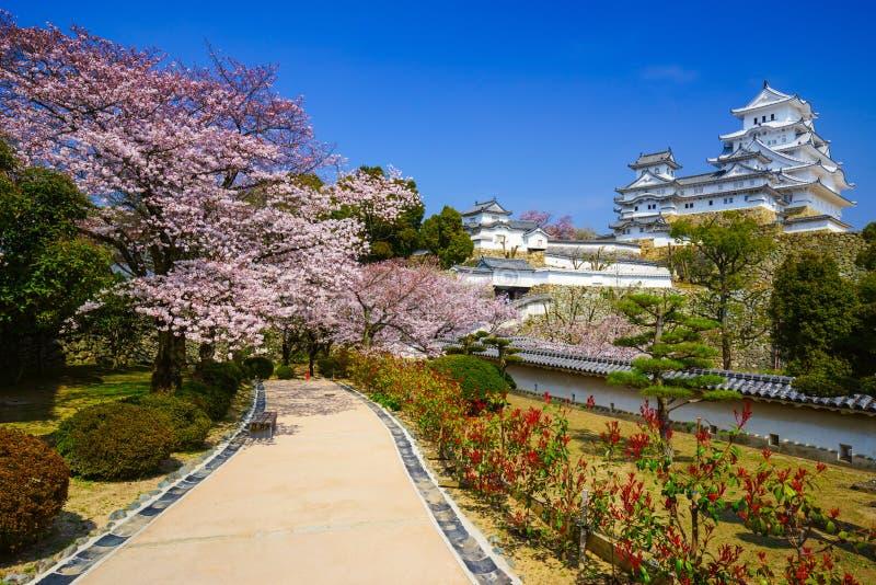 Het Kasteel van Himeji in het seizoen van de kersenbloesem, Hyogo, Japan stock afbeeldingen