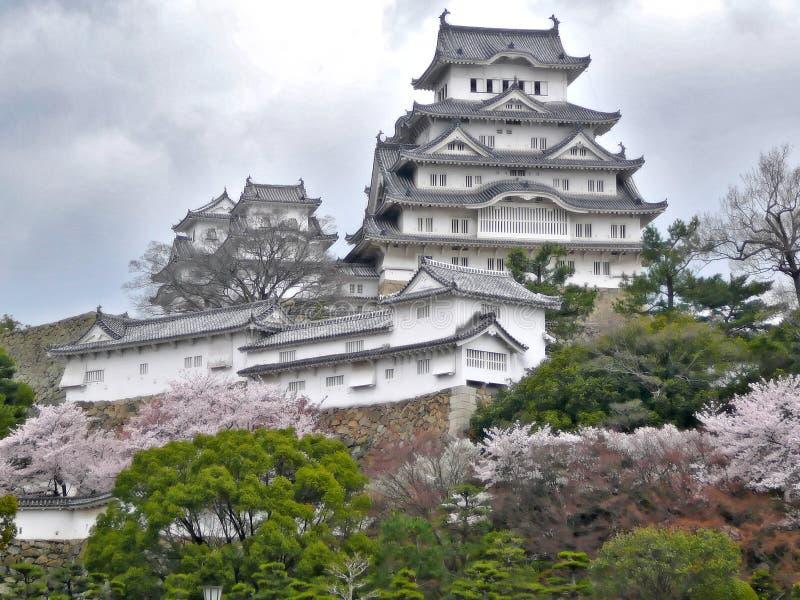 Het Kasteel van Himeji tijdens Sakura stock afbeeldingen