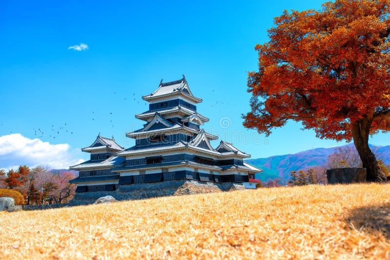 Het kasteel van Matsumoto stock afbeelding