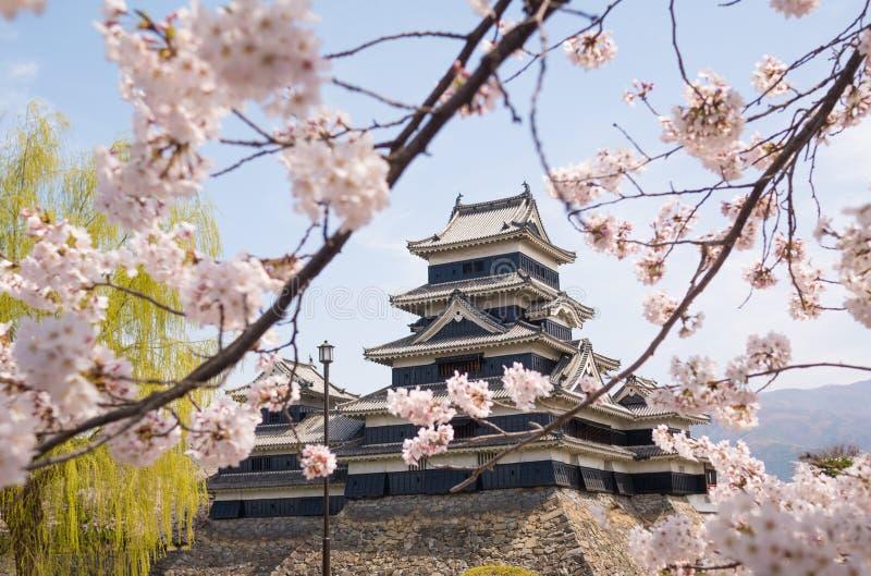 Het kasteel van Matsumoto met de lentebloesems royalty-vrije stock foto's