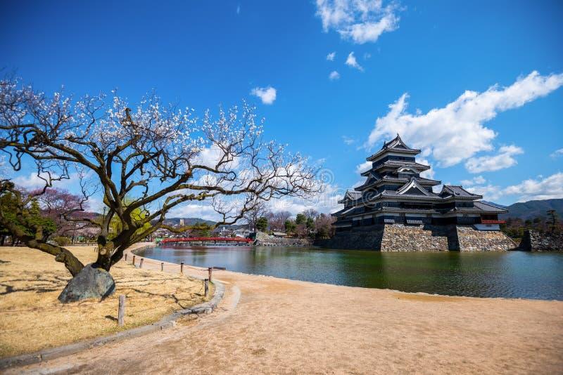 Het Kasteel van Matsumoto, Nagano, Japan royalty-vrije stock foto