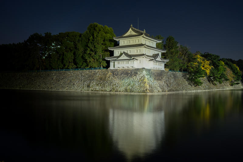 Het Kasteel van Nagoya bij Nacht - Japan stock fotografie
