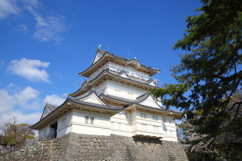 Het Kasteel van Odawara stock foto
