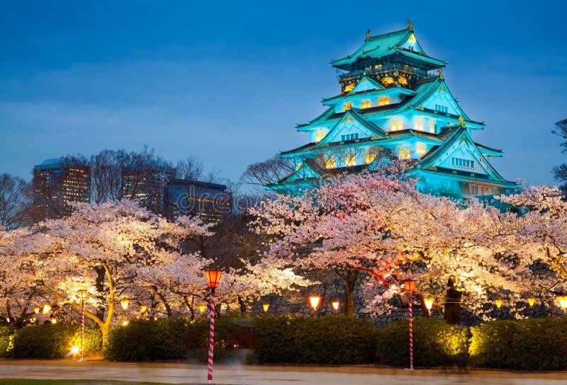Het kasteel van Osaka in het seizoen van de kersenbloesem, Osaka, Japan royalty-vrije stock fotografie