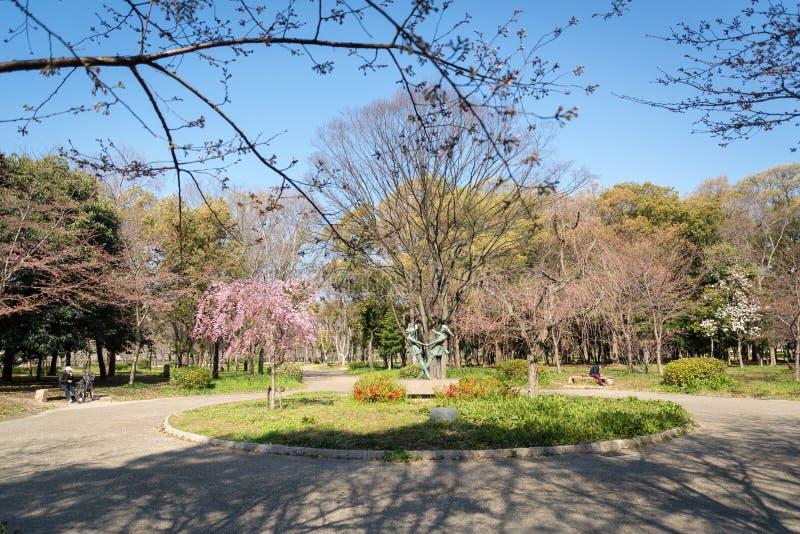 Het kasteel van Osaka in Matsumoto, Japan stock fotografie