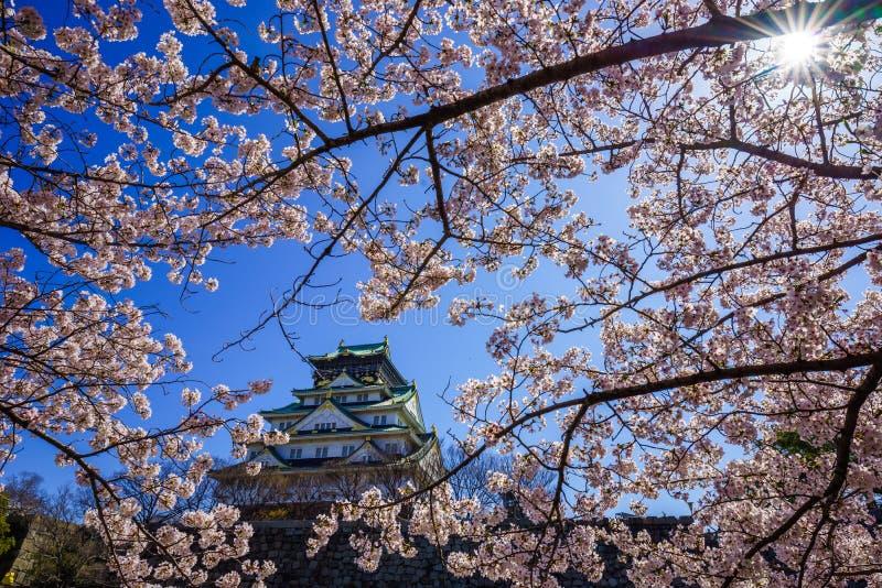 Het kasteel van Osaka, Osaka, Japan stock fotografie