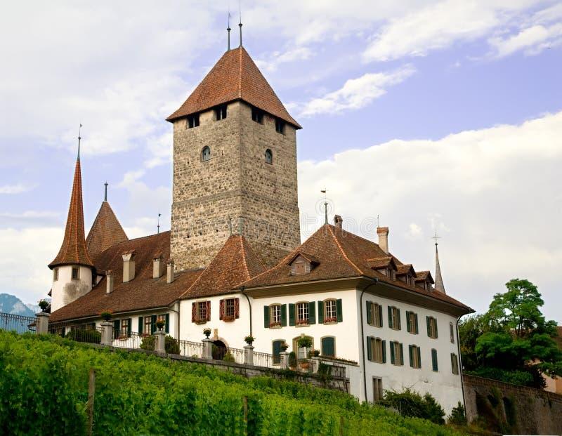 Het Kasteel van Spiez, het Kanton van Bern, Zwitserland stock afbeeldingen