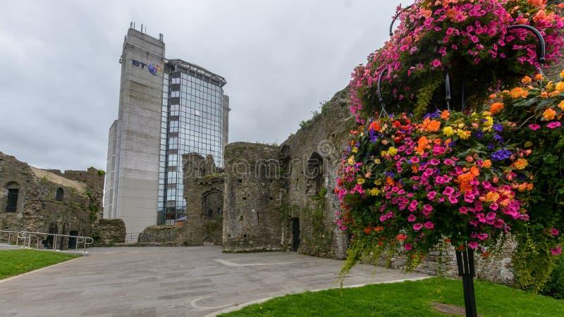 Het Kasteel van Swansea met Bloemen en BT die achtergrond inbouwen royalty-vrije stock afbeelding
