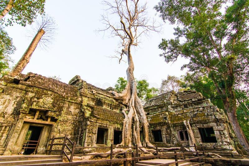Het kasteel van Ta Phrohm, Plaats Siem oogst provincie Kambodja stock afbeelding