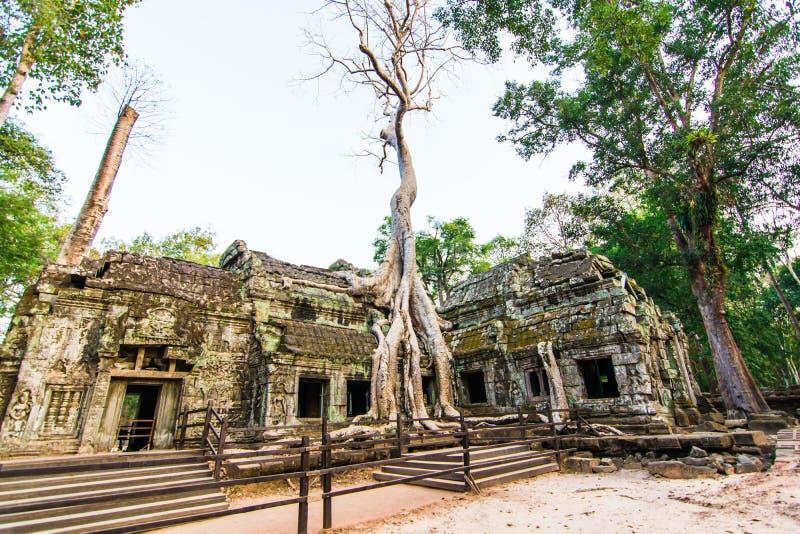Het kasteel van Ta Phrohm, Plaats Siem oogst provincie Kambodja stock fotografie