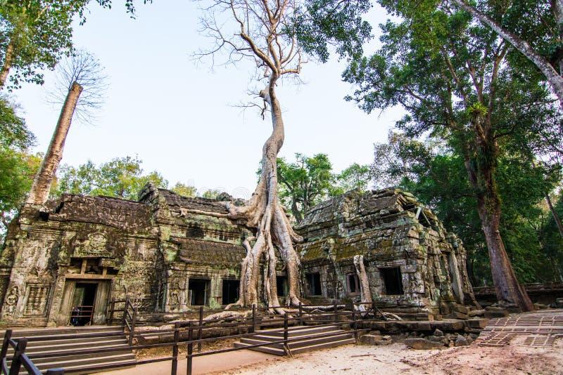 Het kasteel van Ta Phrohm, Plaats Siem oogst provincie Kambodja stock foto's