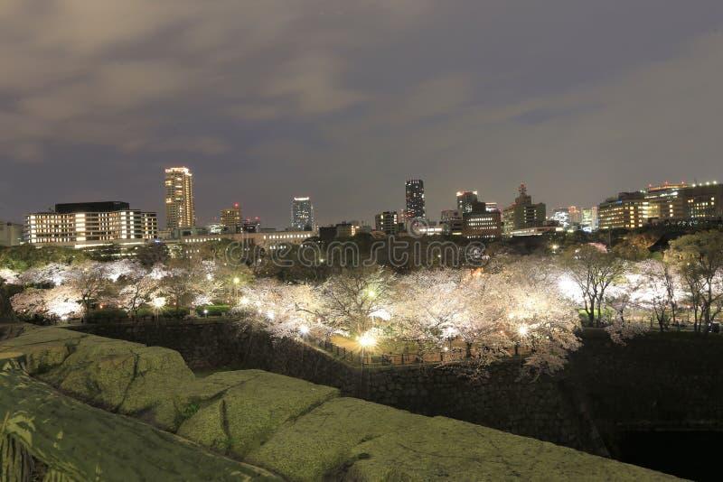 Het kasteelgebied van Osaka royalty-vrije stock foto