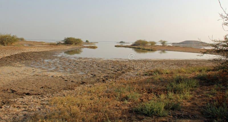 Het kijken naar de zoute moerassen royalty-vrije stock foto's