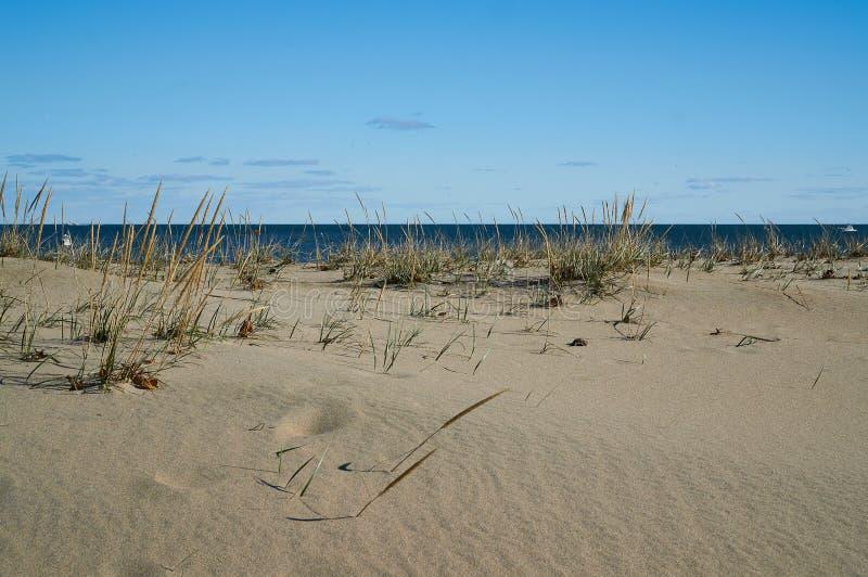 Het kijken uit aan Oceaan voorbij het Strandgras stock foto