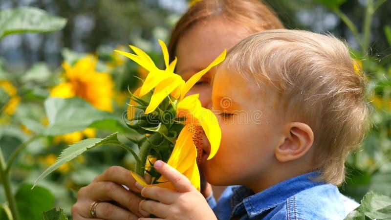 Het kind die in de wapens van zijn moeder met bloem spelen royalty-vrije stock fotografie