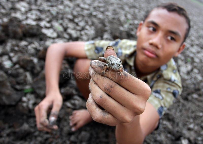 Het kind toont kikkers die hij in het reservoir Kerto Sragen, Centraal Java Indonesia heeft gevangen royalty-vrije stock afbeelding