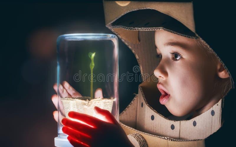 Het kind ziet een spruit stock foto