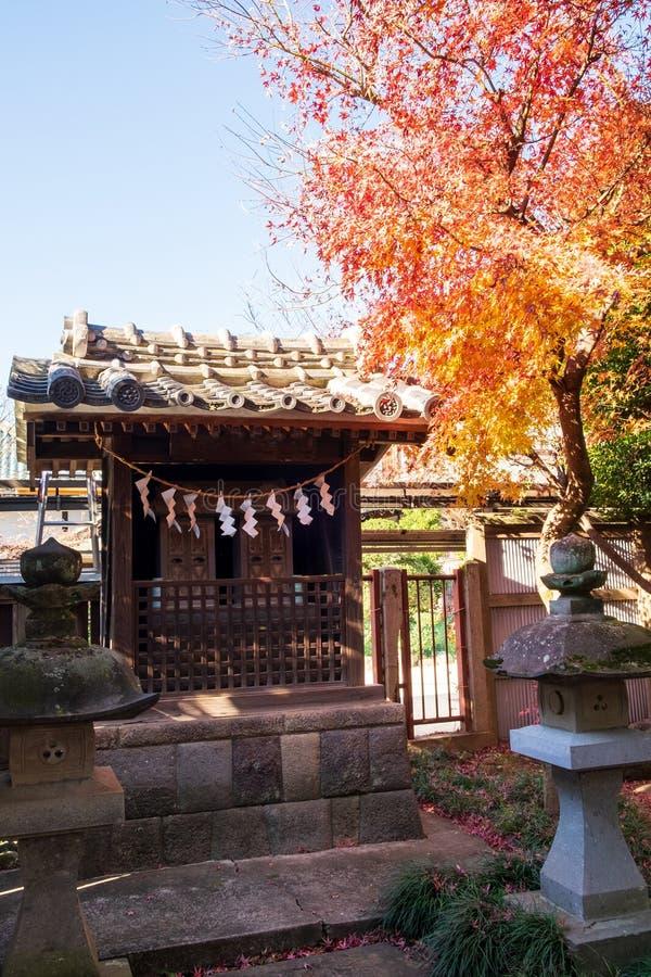 Het kleine heiligdom in Japanse stijl die een esdoornboom heeft verandert kleuren aan de kant royalty-vrije stock afbeelding