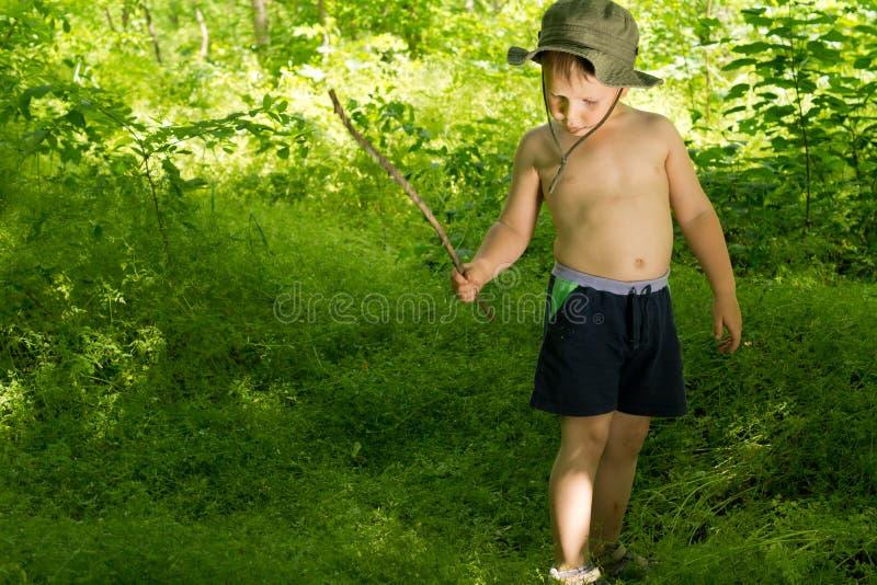 Het kleine jongen spelen in het hout met een stok stock fotografie