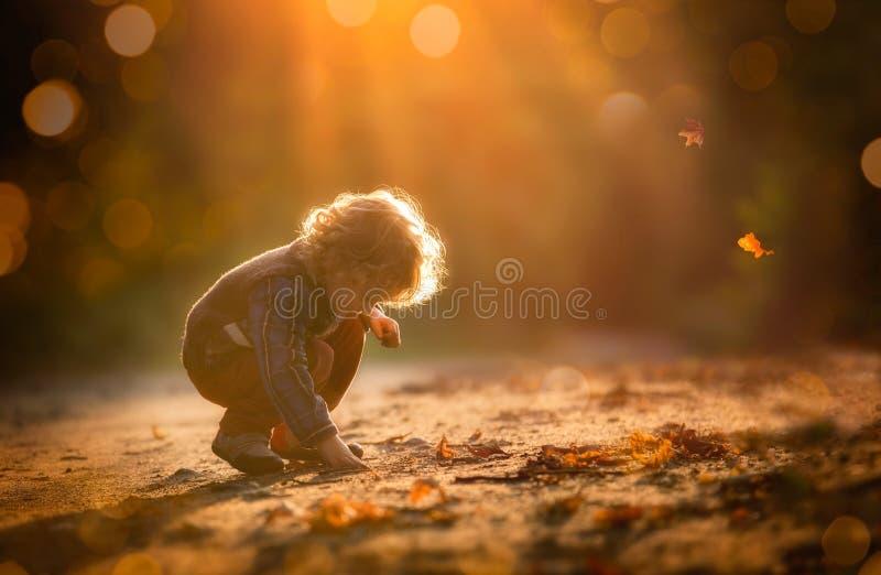 Het kleine jongen spelen in openlucht in herfstlicht stock foto's