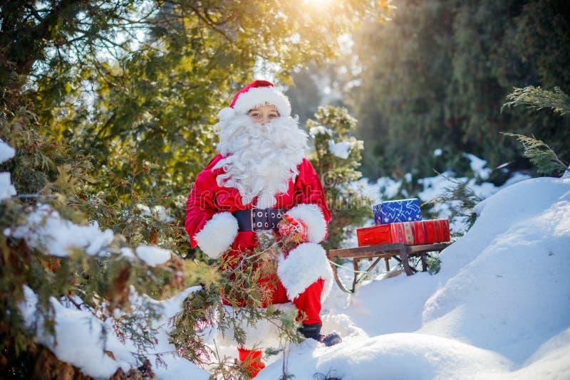 Het kleine Kerstman dragen giften door een de winterbos stock afbeelding