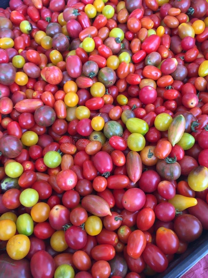 Het kleine kleurrijke fruit van erfgoedtomaten royalty-vrije stock foto