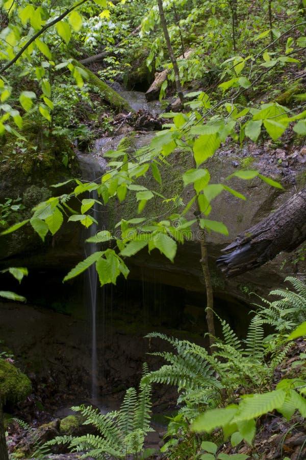 Het kleine waterval dalen op rotsen stock afbeelding