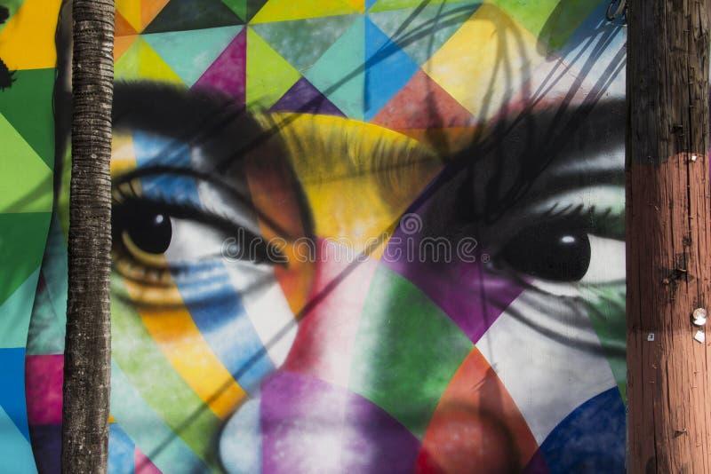 Het kleurrijke gezicht schilderen op een muur bij Wynwood-Muren in Miami Florida stock foto's
