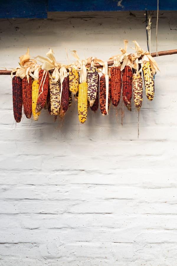 Het kleurrijke graan hangen op een witte muurachtergrond royalty-vrije stock afbeeldingen