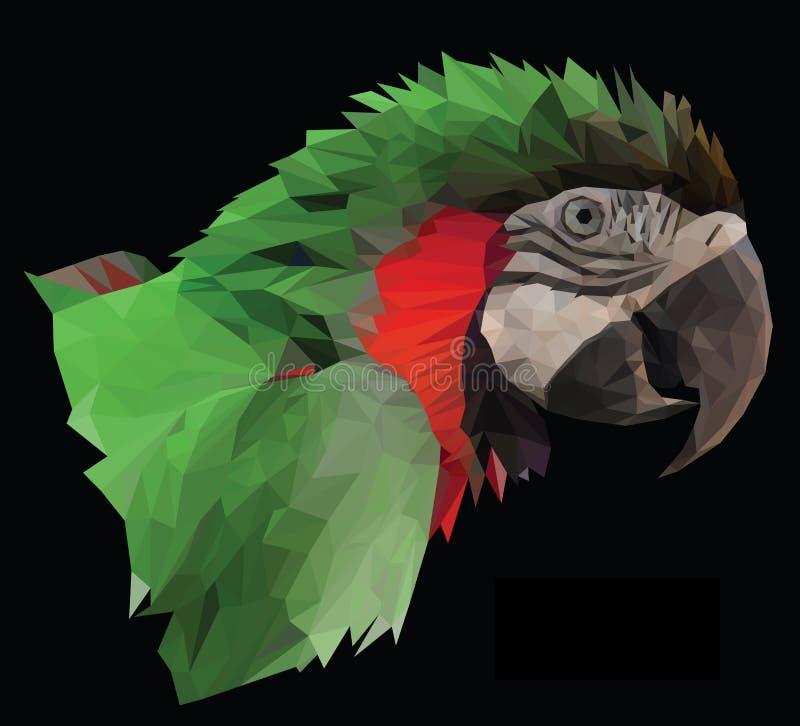Het kleurrijke hoofd van de arapapegaai op zwarte achtergrond stock illustratie