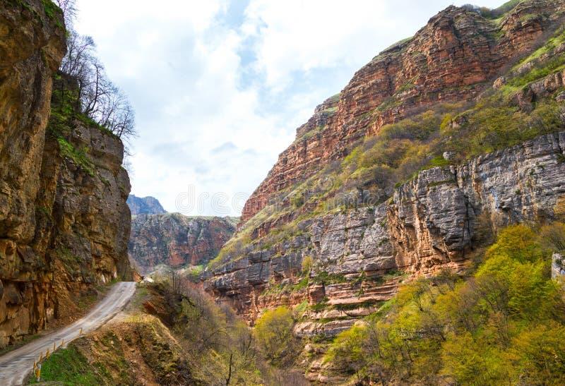 Het kleurrijke landschap van het bergplateau, rotsvormingen met gekleurde rotsen en vegetatie stock foto