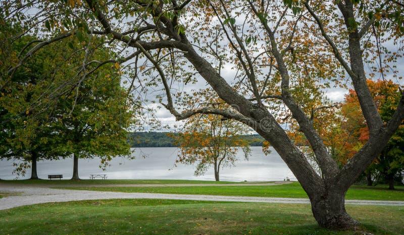 Het kleurrijke Landschap van de Herfst stock foto's