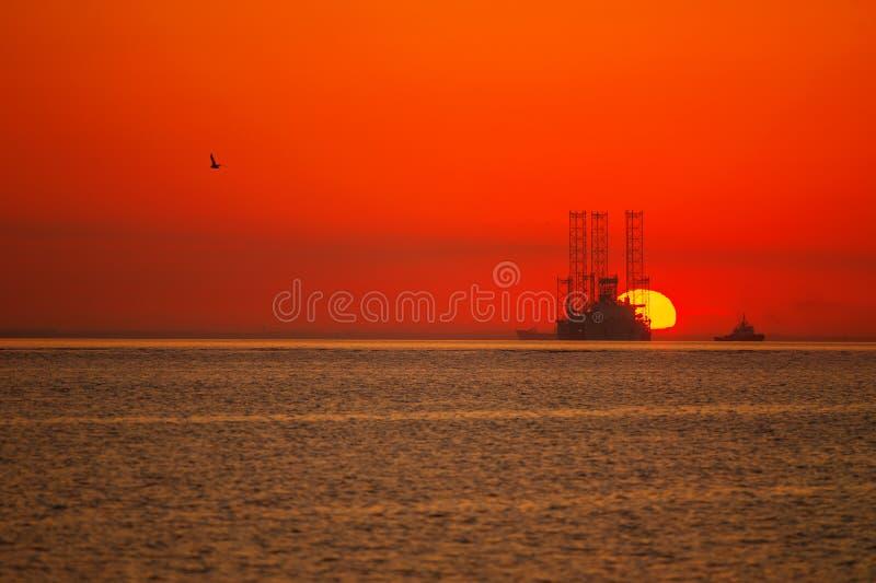 Het kleurrijke zon toenemen royalty-vrije stock afbeelding