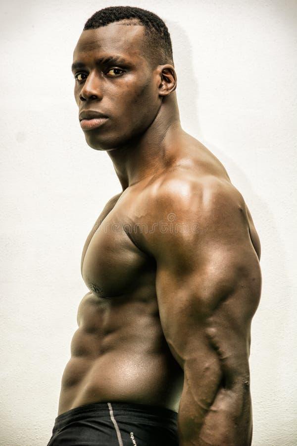 Het knappe zwarte mannelijke bodybuilder stellen in studioschot royalty-vrije stock afbeeldingen