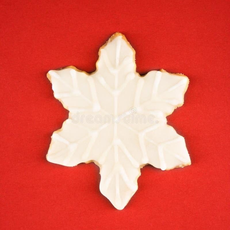 Het koekje van de sneeuwvlok. royalty-vrije stock foto